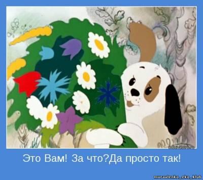 http://muravlenkoekokl.ucoz.ru/_nw/6/s49484165.jpg